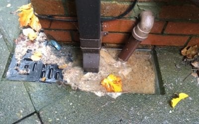 Drain Cleaning – lockdown know how